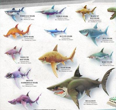 《饥饿鲨:世界》鲨鱼介绍